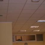 Colocación de techo desmontable en oficina